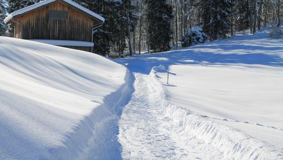 A path that would benefit from our gritting services