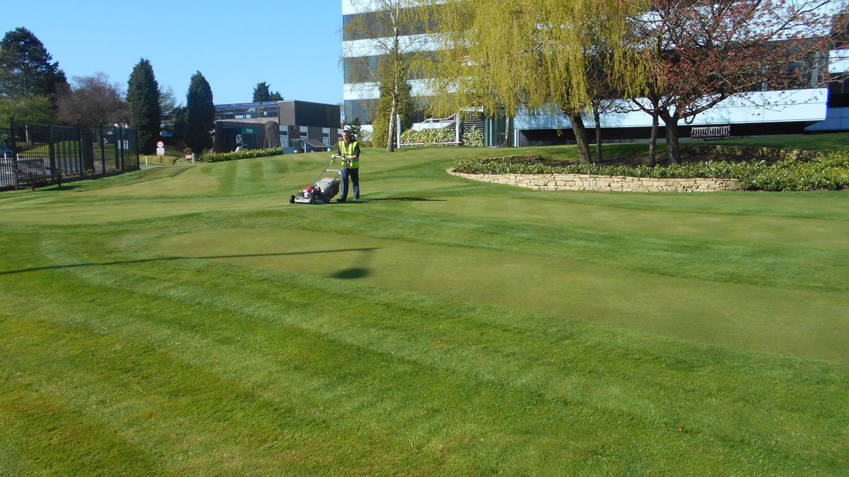 Commercial property getting ground maintenance